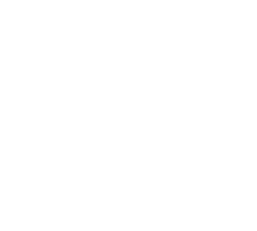 Icons-Bag